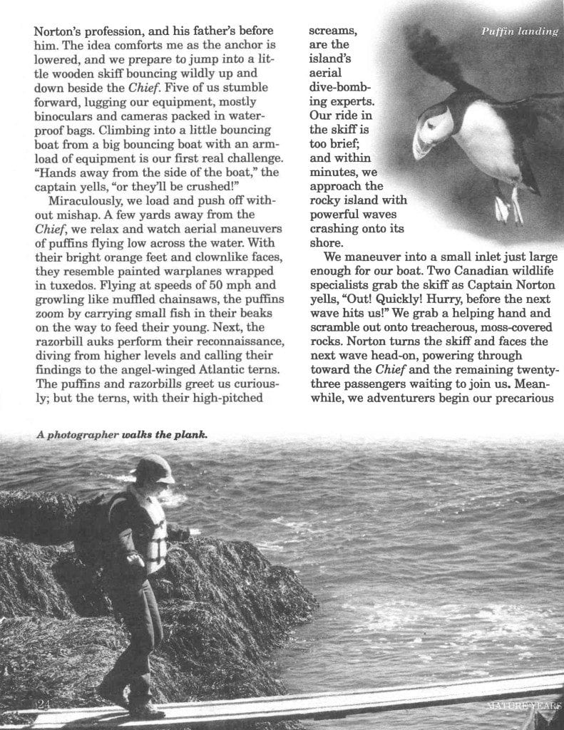 The Puffin Connection published in Mature years page 3