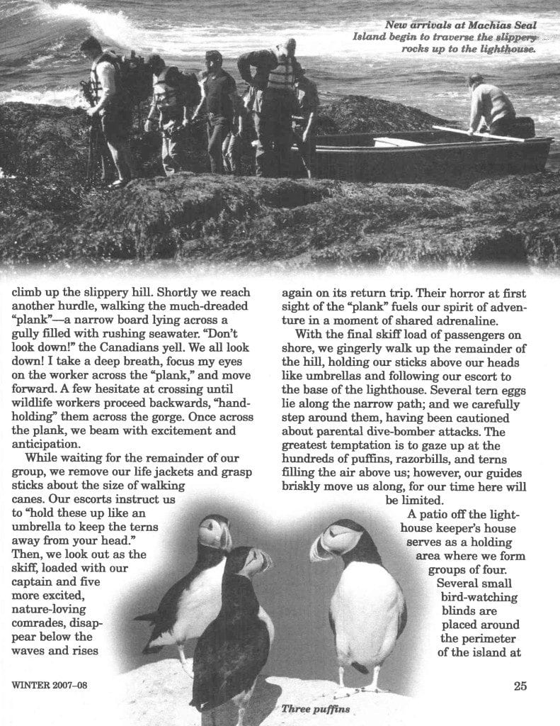The Puffin Connection published in Mature years page 4
